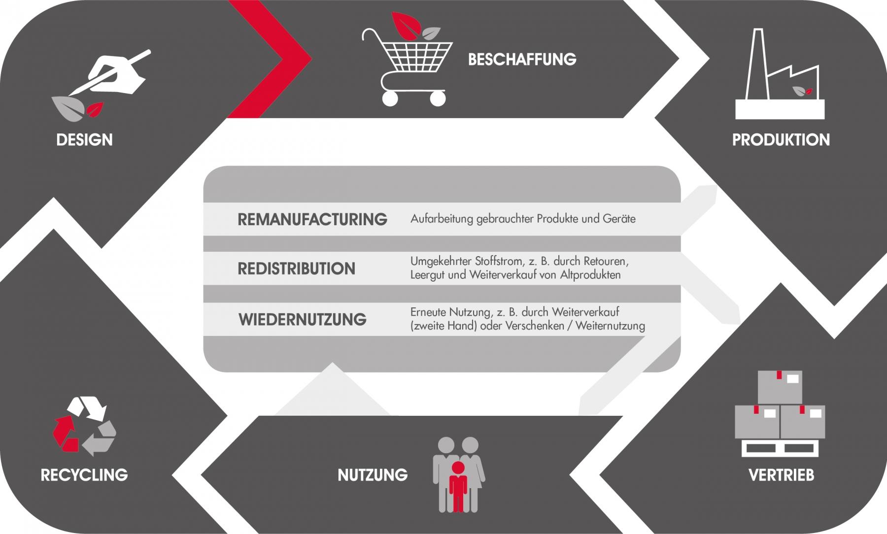 Die Grafik zeigt die Phasen des Kreislaufs einer zirkulären Wirtschaft: Design, Beschaffung, Produktion, Vertrieb, Nutzung  und Recycling.