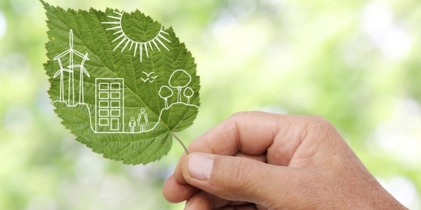 Das Bild zeigt eine Hand, die ein grünes Blatt hält.