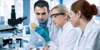 Das Bild zeigt drei Wissenschaftlerinnen und Wissenschaftler bei der Arbeit.