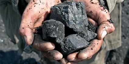 Das Bild zeigt eine Person, die mehrere Stücke Kohle in ihren Händen hält.
