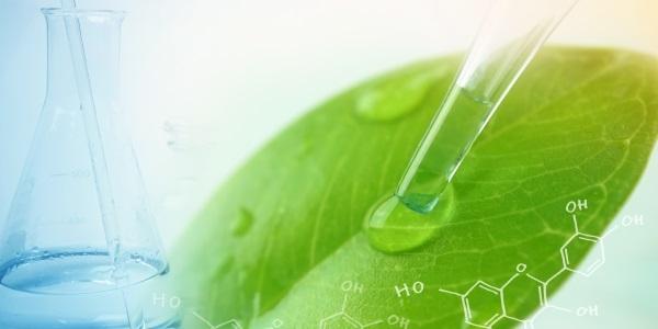 Gemeinsam in eine biobasierte Zukunft – BMBF und BMEL bündeln ihre Bioökonomie-Strategien
