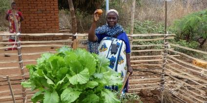 Das Bild zeigt eine Frau bei der Gemüseernte in einem kenianischen Dorf.