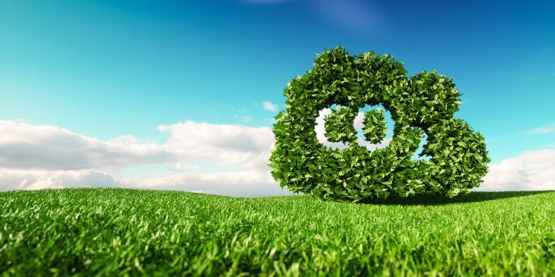Bild: ©malp - stock.adobe.com