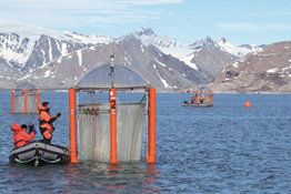 The image shows marine researcher scientists. They have moored their inflatable boats to floating platforms.