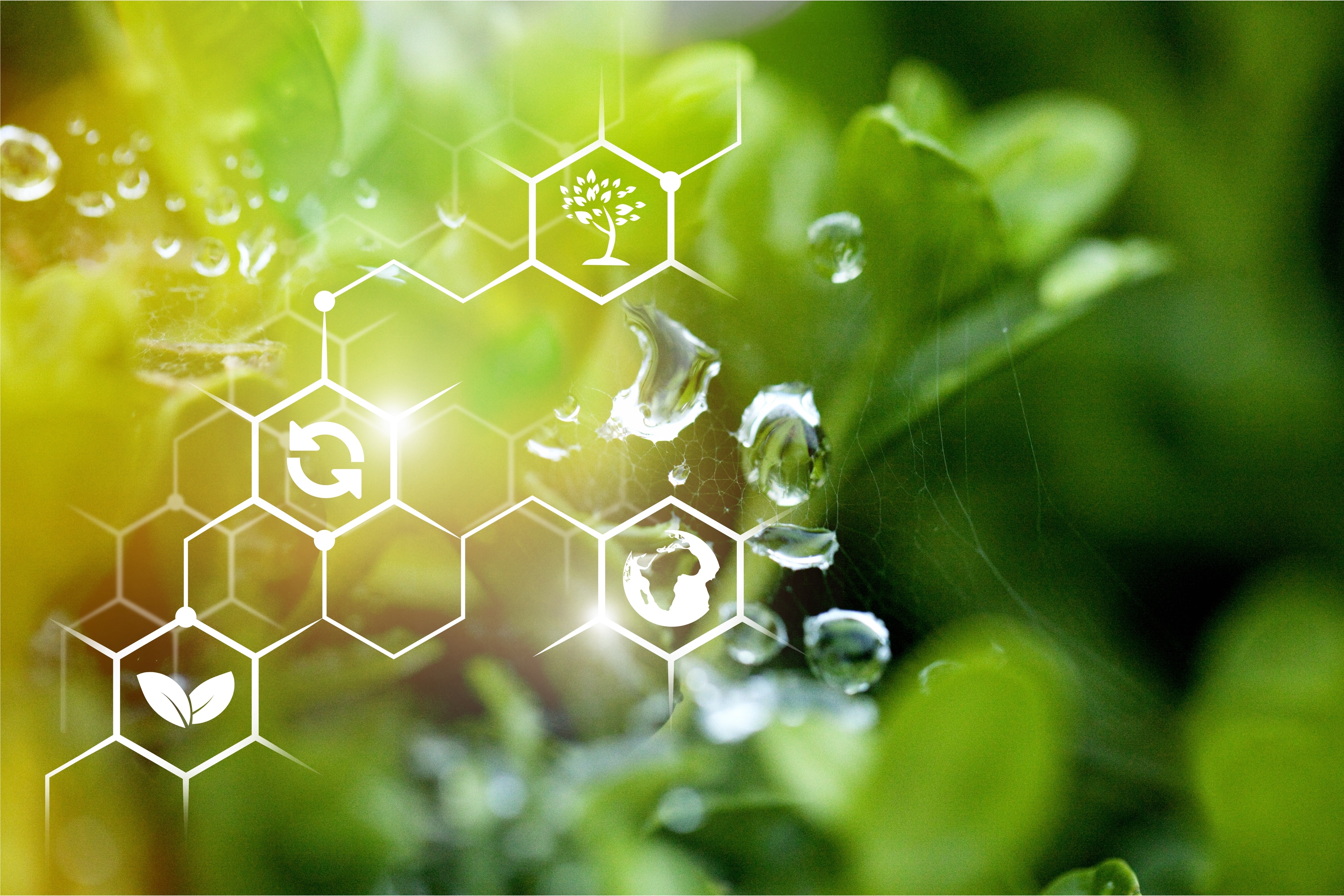 biological knowledge and advanced technology as pillars of a future-oriented, sustainable bioeconomy