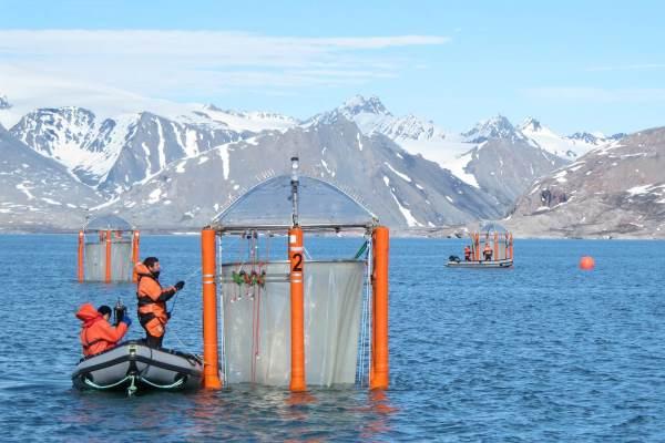 Das Bild zeigt Meeresforscher. Sie haben mit Schlauchbooten an schwimmenden Plattformen festgemacht.